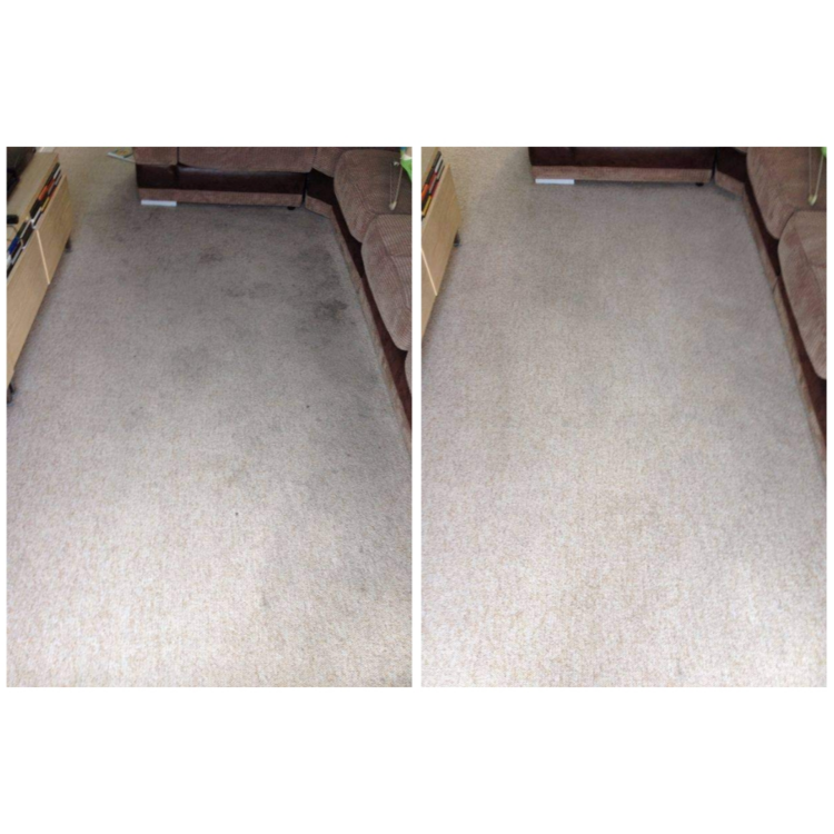 Before and after on cream lounge carpet