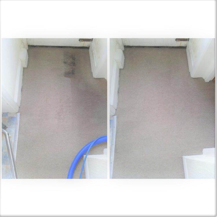End of tenancy carpet clean in flat hallway.