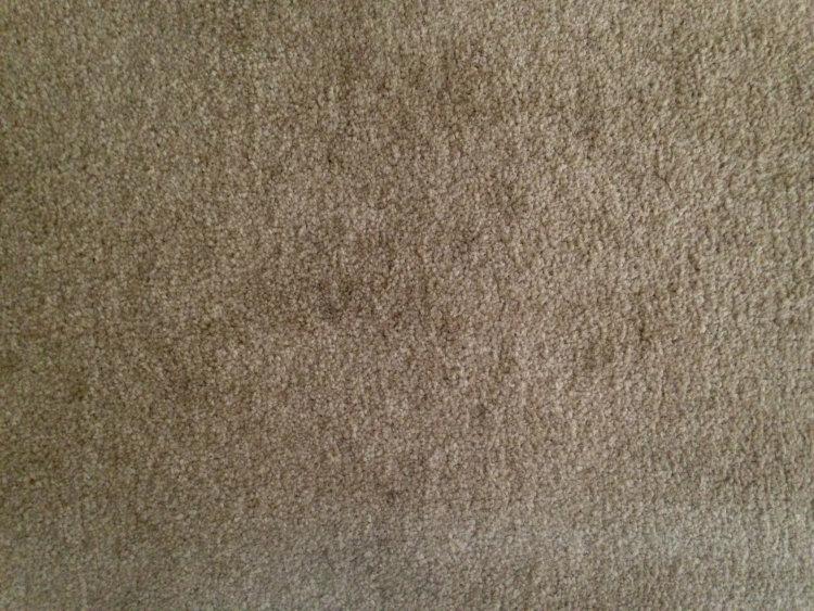 Generally grubby carpet