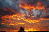 729  Fire in the Sky, ELGIN