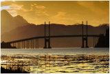 748  The Kessock Bridge