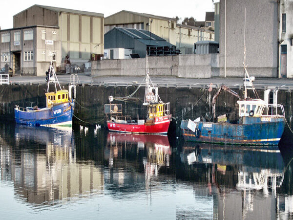 33 Boats at Buckie