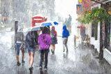 273  Downpour