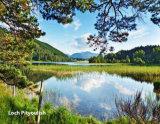 262  Loch Pityoulish