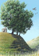 Avebury kite
