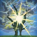 Golden Oak