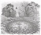 Pit House Pond