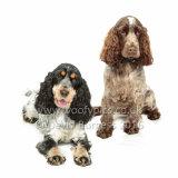 069 160813-Belle & Ruby