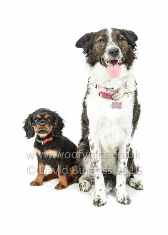 109 160717-Skye & Holly