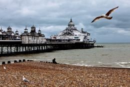 Eastbourne pier with gull