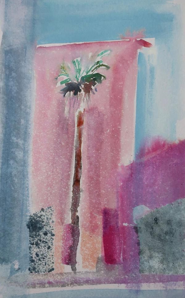 Syracusa Palm