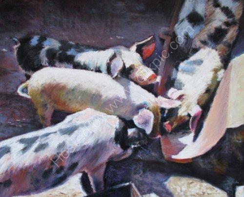 Feeding Time at the Farm