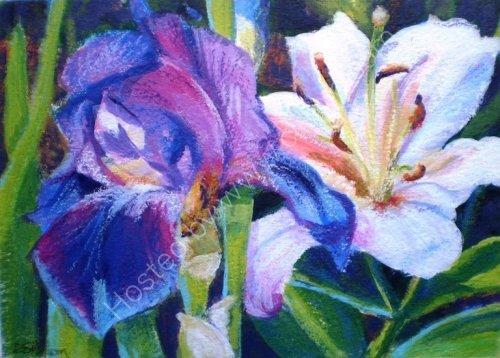 Iris & Lily