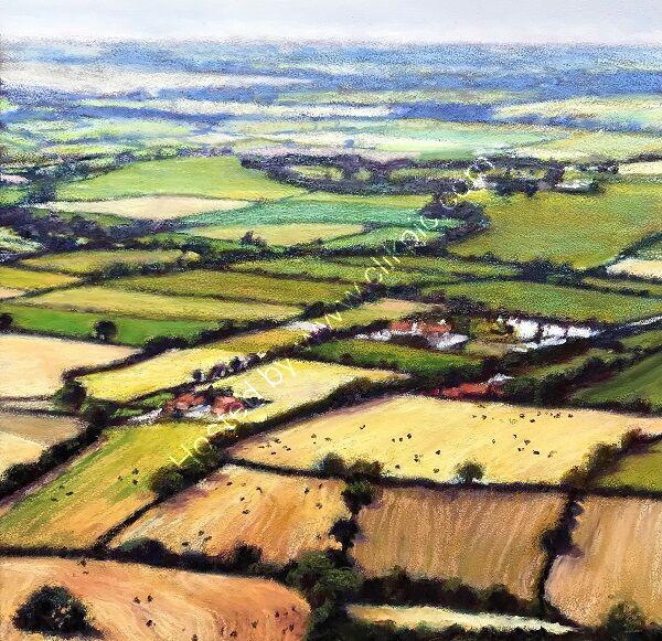Patchwork Fields, North Yorkshire