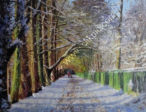 Railway Walk, Sutton Park