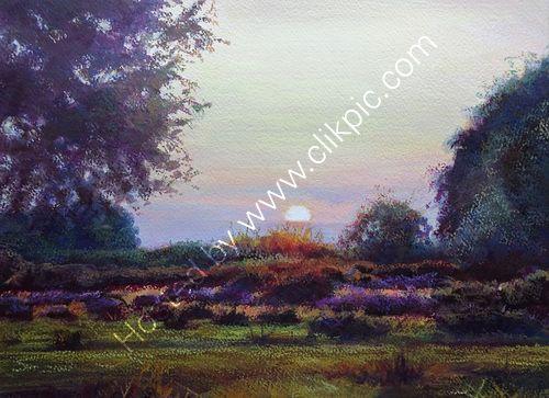 Setting Sun, Sutton Park