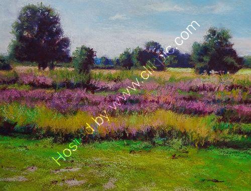 Sutton Park Heather
