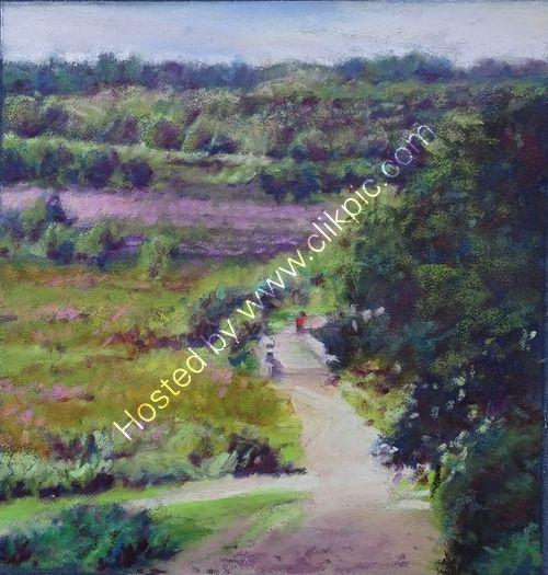 View of Heather, Sutton Park