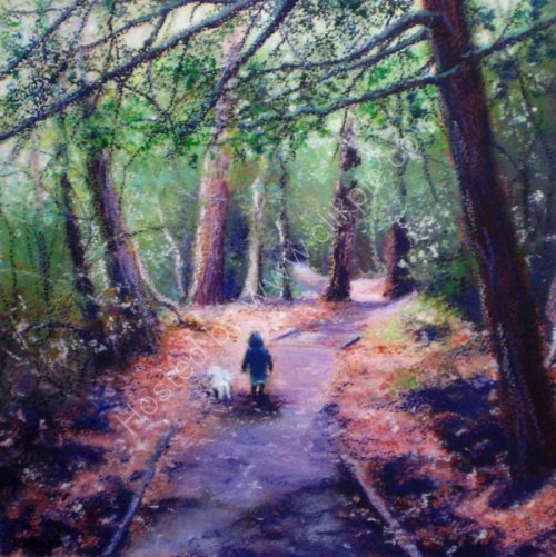Walk Along the Bridges, Sutton Park