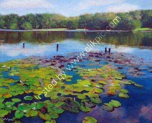 Water Lilies, Sutton Park