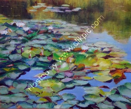 Water Lilies, Blackroot Pool