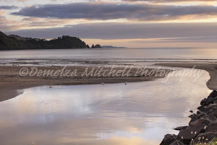 Mercury Bay at Dawn