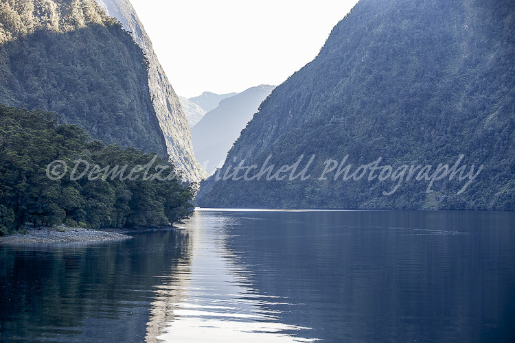 Morning stillness - Hall Arm, Doubtful Sound
