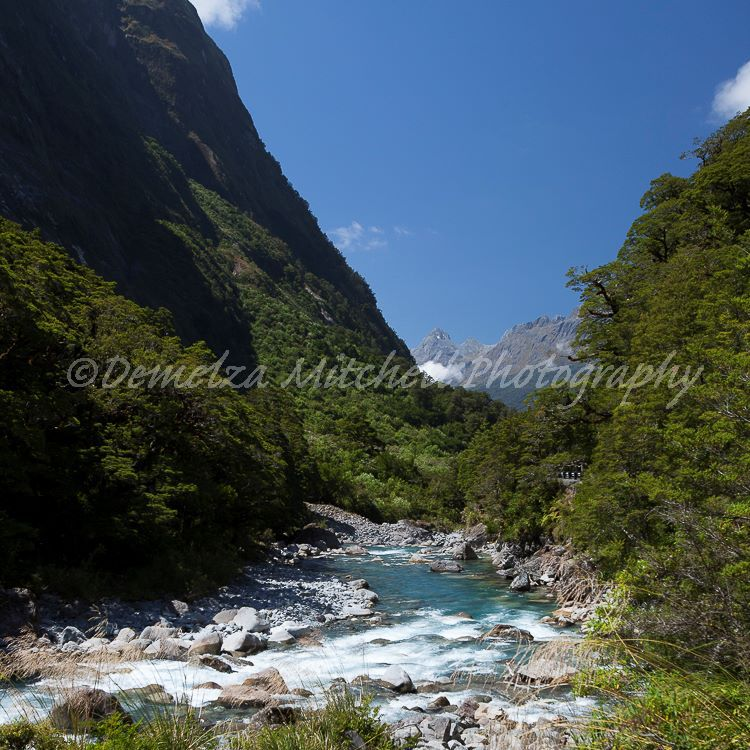 Hollyford River above Falls Creek
