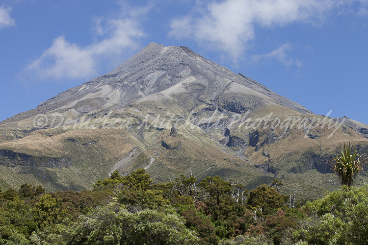 Upper Slopes, Taranaki/Mt Egmont