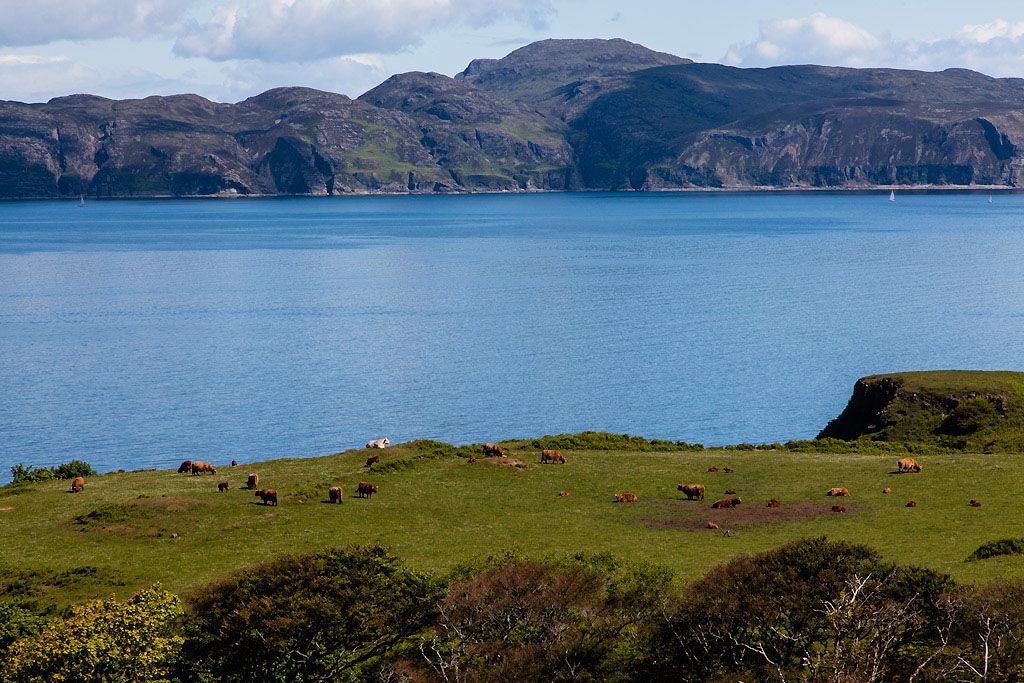 Glengorm Lawn View