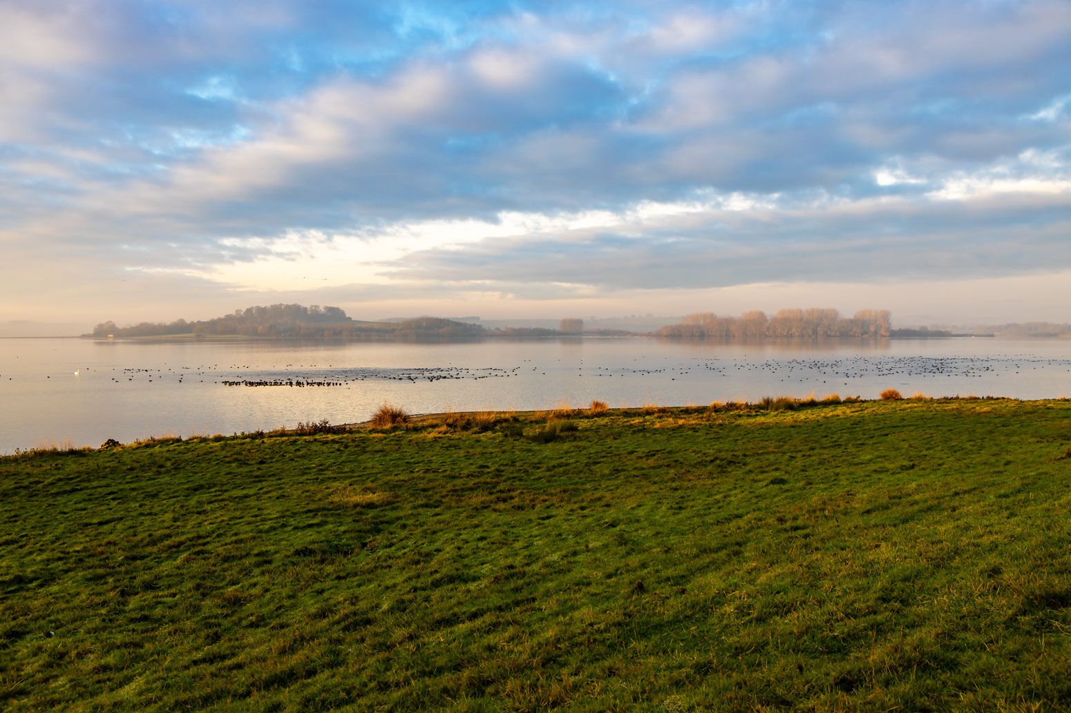 Rutland Water Bird Sanctuary