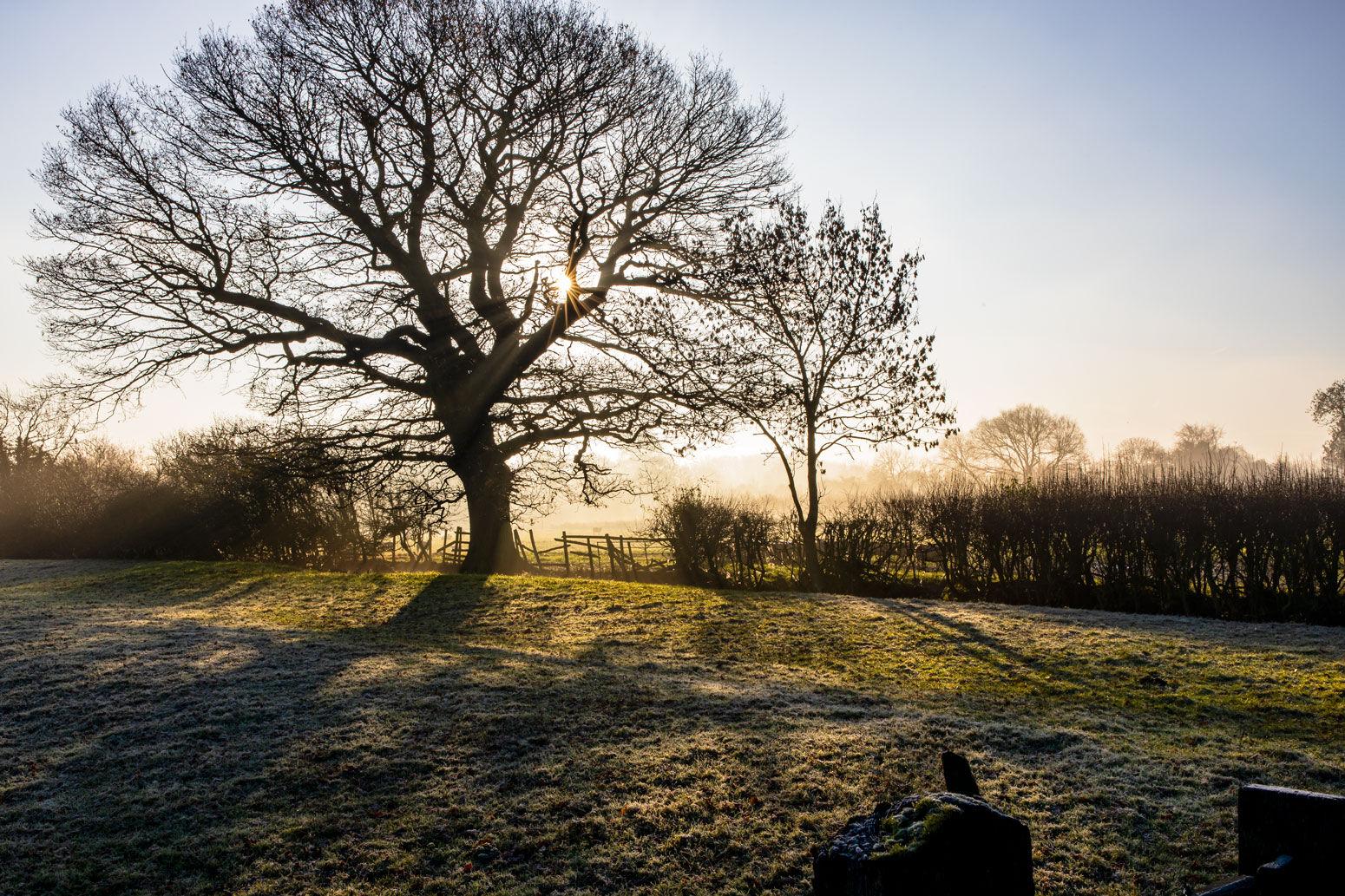 Rutland Water Misty Morning