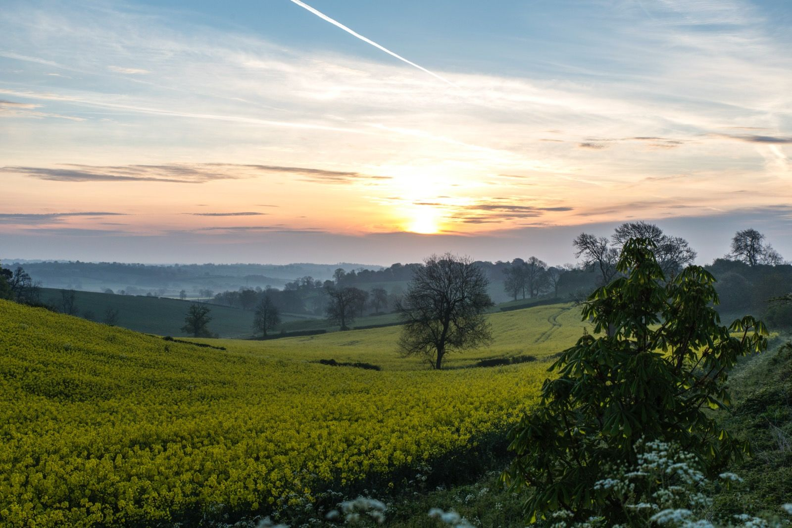 Spring sunrise - Preston Rutland