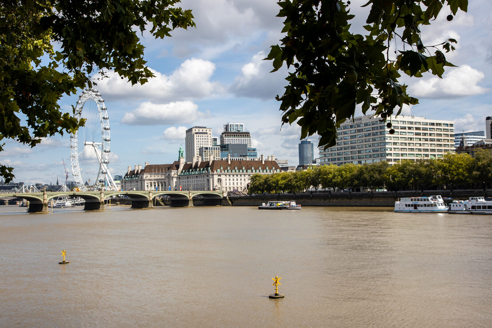 Westminster & London Eye