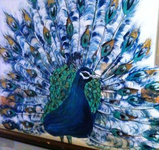 Memory Lane peacock