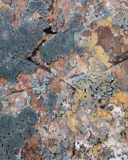 Sandstone & Lichens, Coire Dubh Mòr