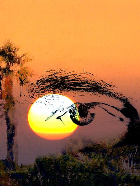 Eye and setting Sun