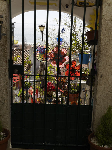 Gate with coloured flowers