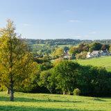 Early Autumn near Sheepscombe