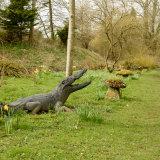 Mind the crocs!