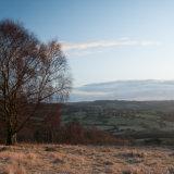 Painswick Sunrise