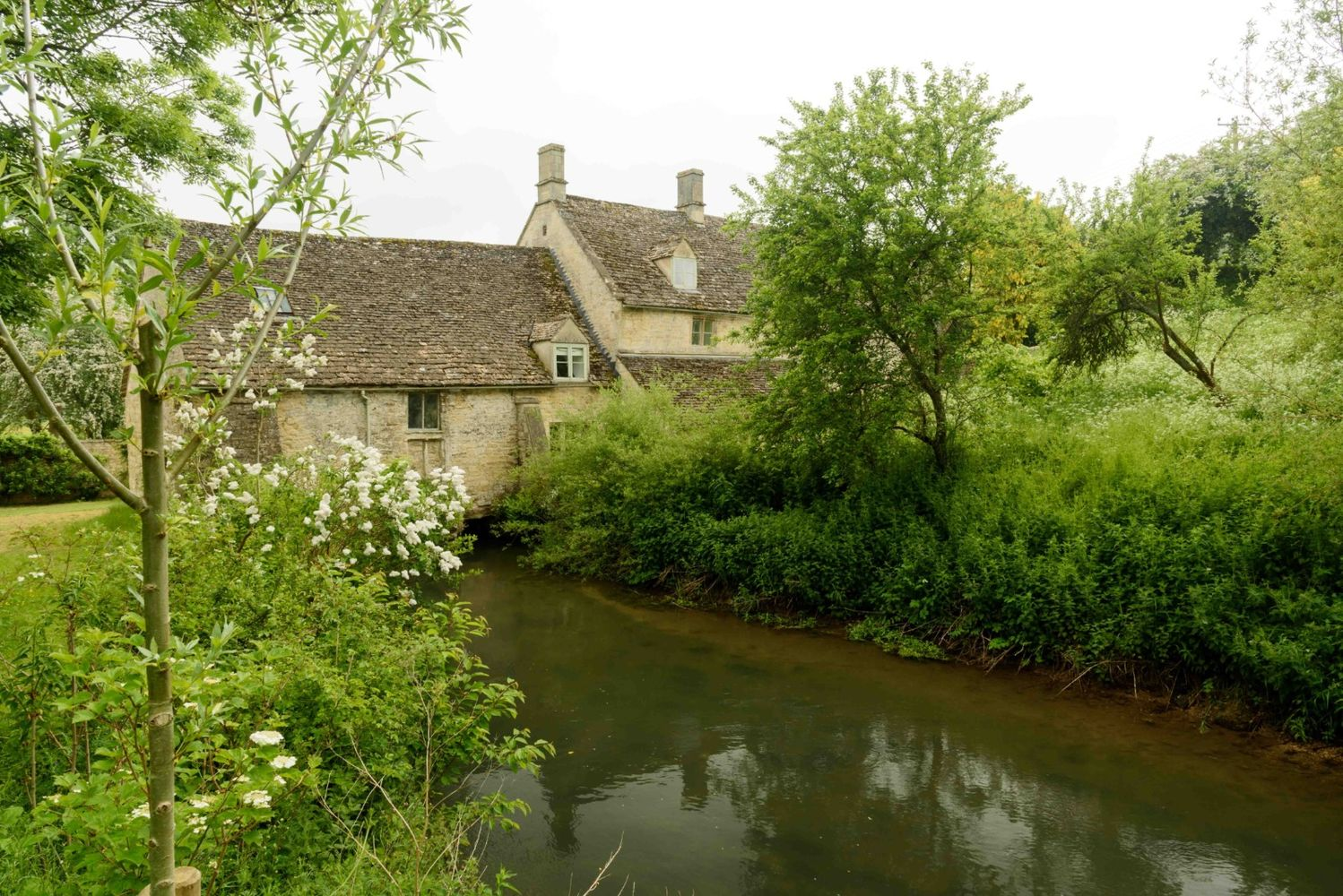 Wild Cotswolds#2