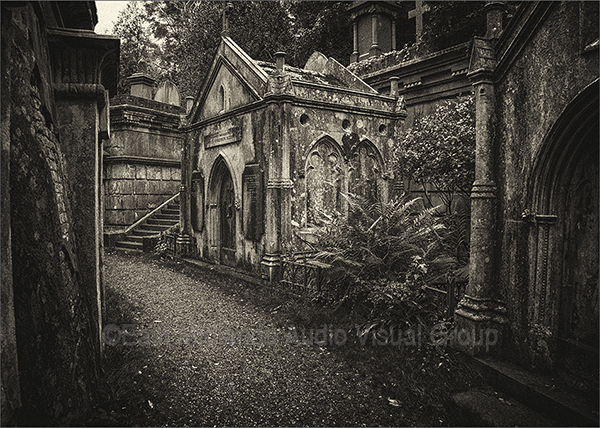 "An image from ""Highgate Cemetery"""