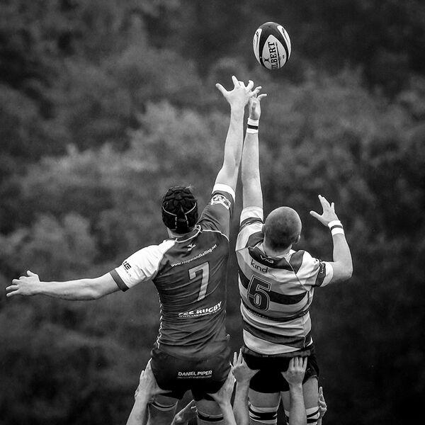 essex mono rugby