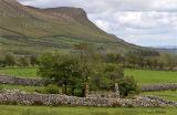 Cottage Ruin. Co. Sligo