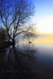 Dawn . Garadice Lake. Co. Leitrim