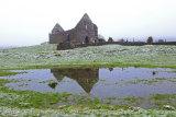 Fenagh Abbey Reflection