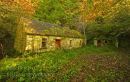Abandoned Cottage. Doon. Co. Leitrim