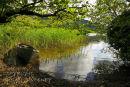 Hidden  Mooring. Glencar Lake. Co.Sligo