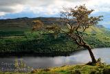High above Glencar Lake. Co. Leitrim